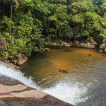 Saiba como visitar a Cachoeira do Prumirim em Ubatuba